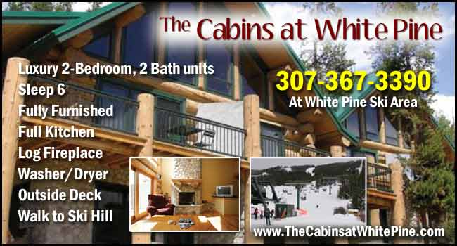 The Cabins at White Pine