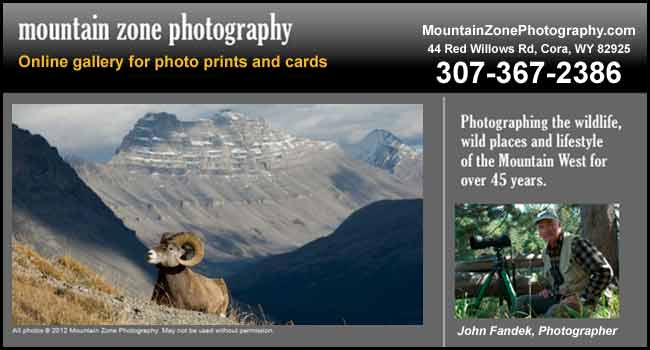 Mountain Zone Photography