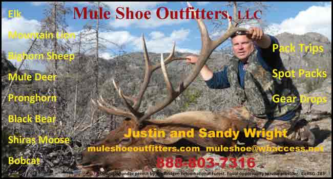 Mule Shoe Outfitters