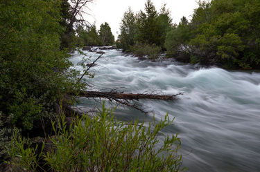 Pine Creek roaring. Photo by Arnie Brokling.