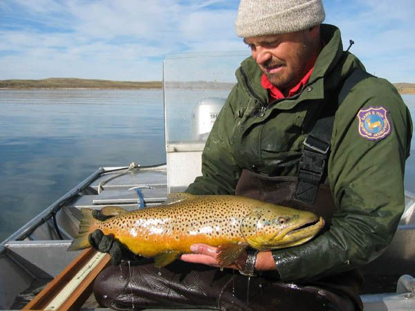 Soda lake pinedale online news wyoming for Lake fishing games
