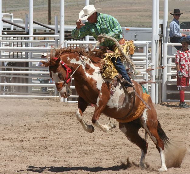 Saddle Bronc Ride Pinedale Online News Wyoming