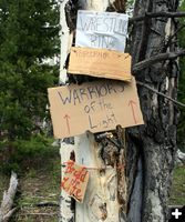 Camp Signs. Photo by Dawn Ballou, Pinedale Online.