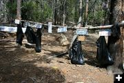 Recycle Bags. Photo by Dawn Ballou, Pinedale Online.