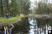 Pond by trail. Photo by Dawn Ballou, Pinedale Online.