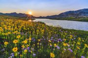 Flower Full Sunset At No Name Lake. Photo by Dave Bell.