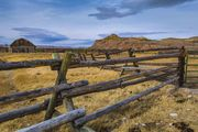 Corral Fencing. Photo by Dave Bell.