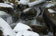 Sweeney Creek Icy Cascade. Photo by Dave Bell.