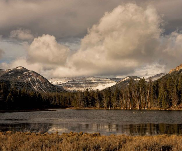 Pinedale Wyoming, Pinedale Online