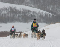 Photo courtesy EUKANUBA Stage Stop Race