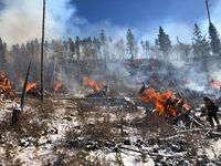 The Forest Service is doing fall burning of slash piles. Smoke may be visible. Photo courtesy BTNF.