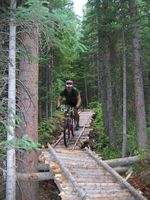 Mountain biking trails at White Pine Ski Area. White Pine courtesy photo