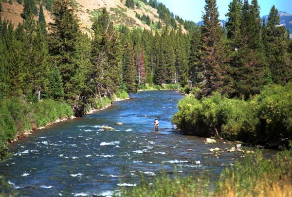 wyoming fishing, pinedale wyoming, Fly Fishing Bait